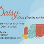 Daisy House Cleaning
