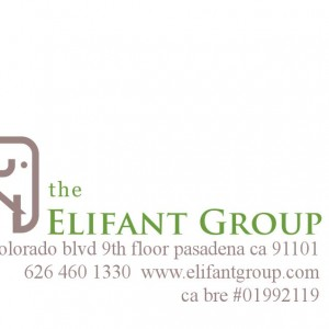 Business Cards – The Elifant Group